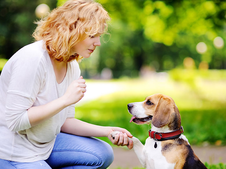 CAN-A-PERSON-HAVE-MORE-THAN-ONE-EMOTIONAL-SUPPORT-ANIMAL
